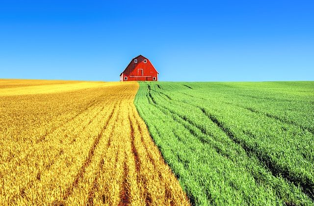 Agriculture and Food 2